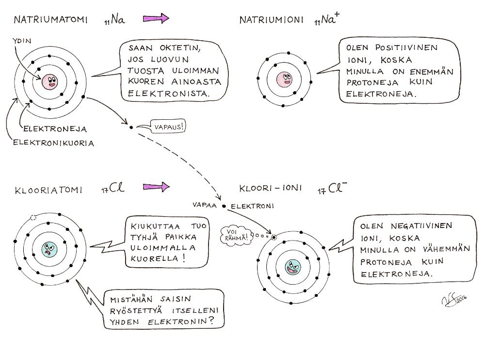 alkuaineiden protoni määrät